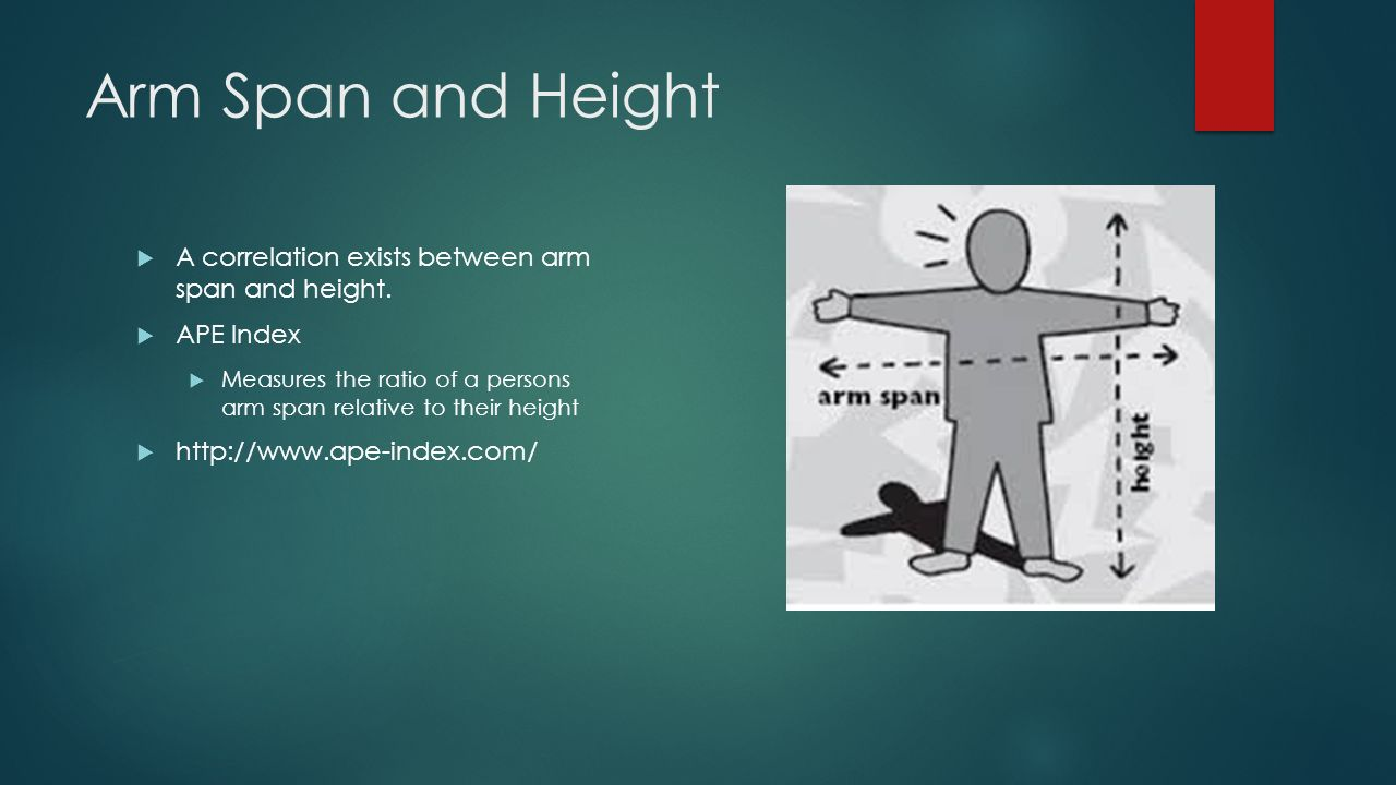 relationship between height and arm span of michael