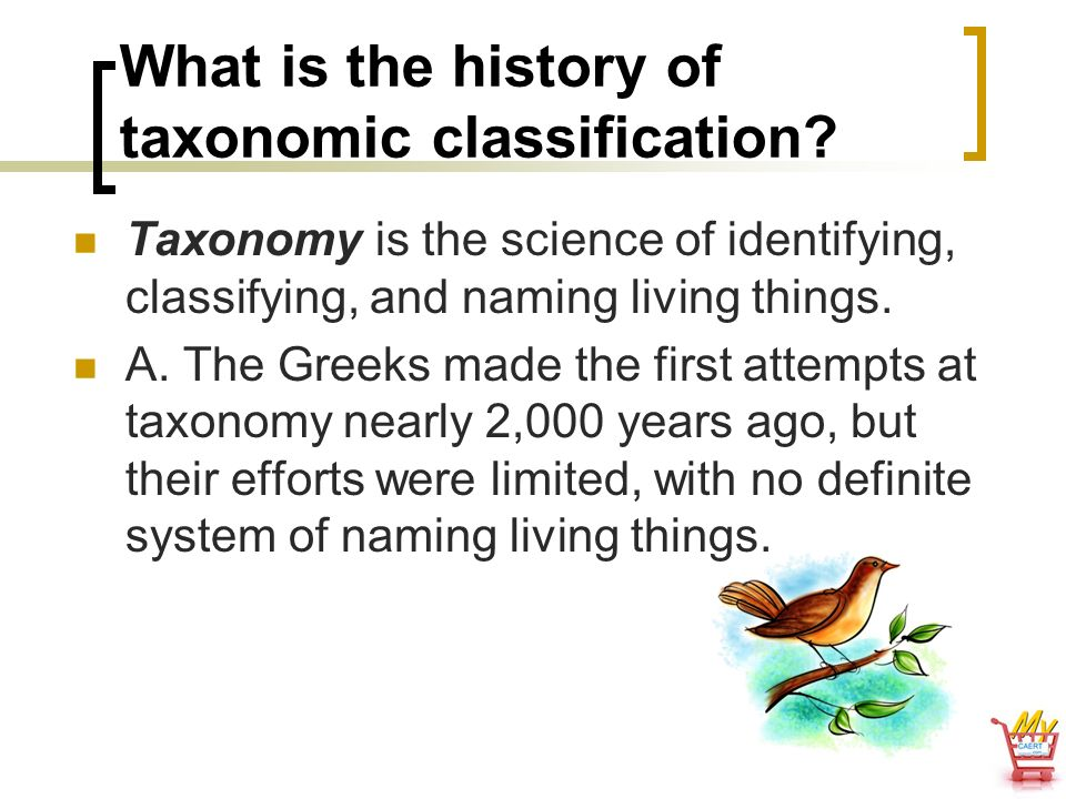 What is the history of taxonomic classification