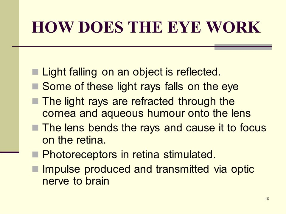 HOW DOES THE EYE WORK Light falling on an object is reflected.