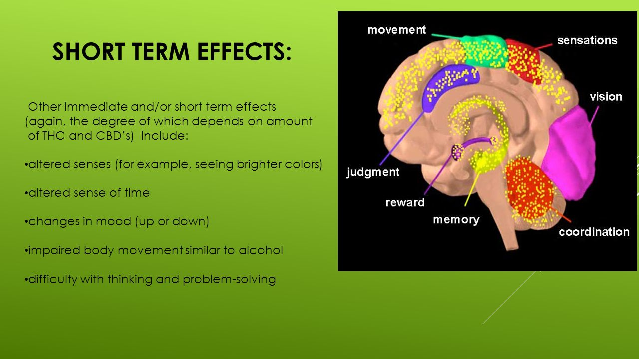 Short Term Effects : Marijuana facts and effects ppt download