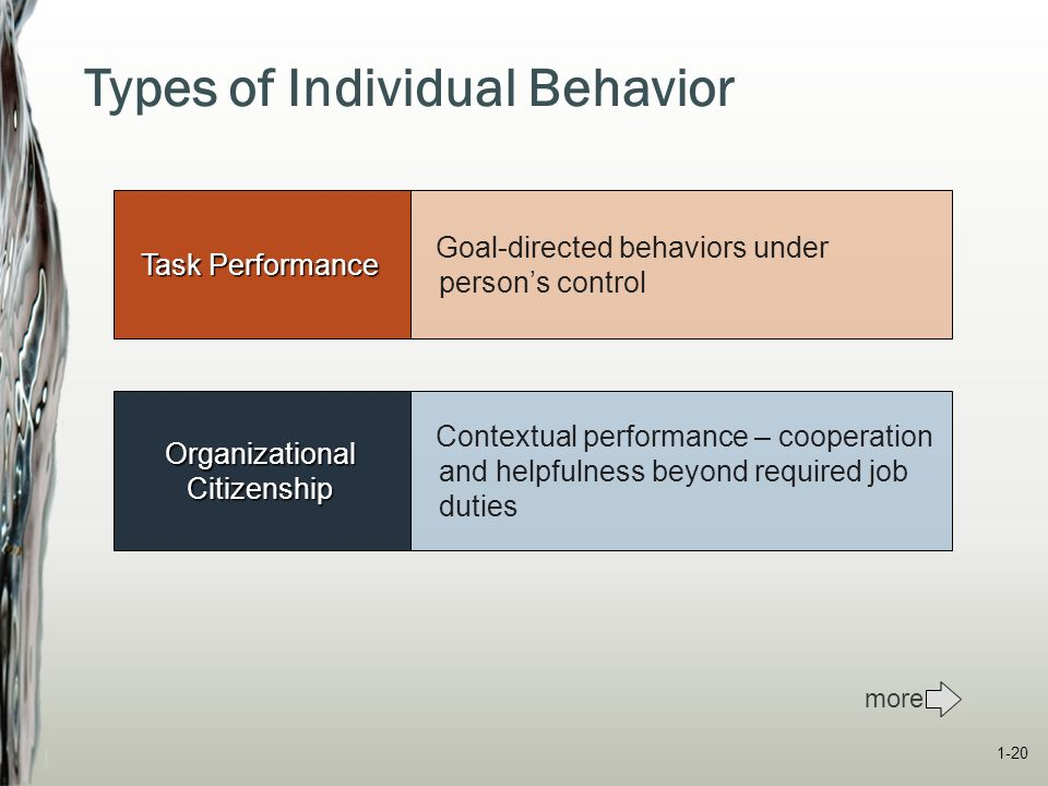type of individual behaviour Describe the link between values and individual behavior  [1] the values that  are important to people tend to affect the types of decisions they make, how they .