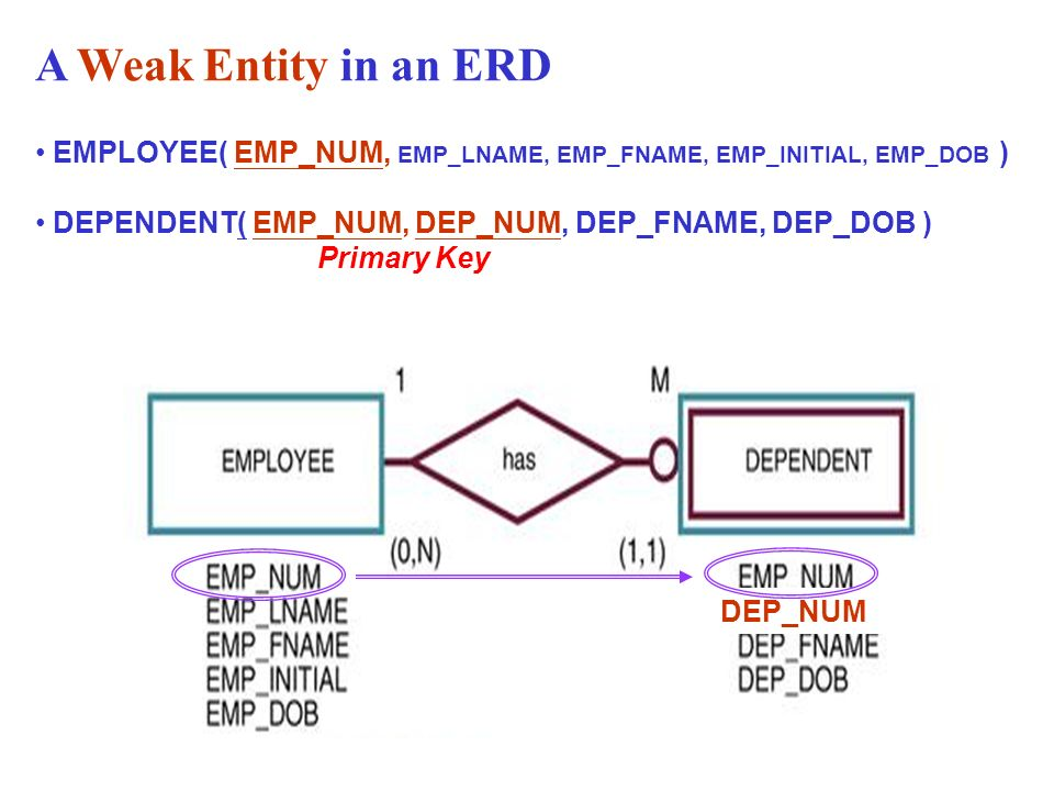 Chapter 4 entity relationship e r modeling ppt download a weak entity in an erd employee empnum emplname empfname empinitial ccuart Choice Image