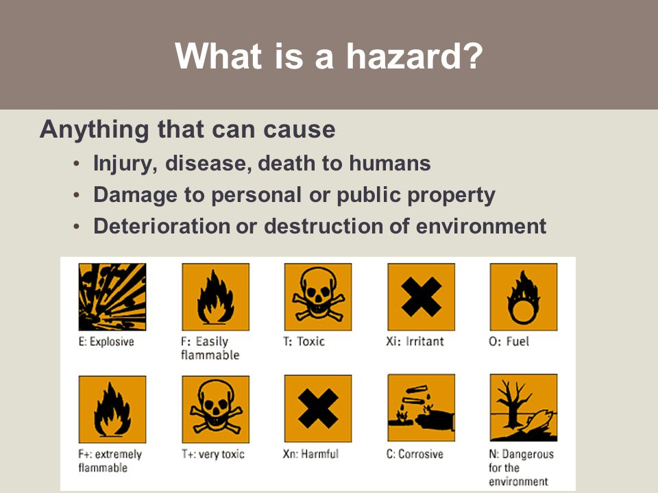 enviromental hazards The geo-genetic status of earthquake-related hazards and the role of human and policy dimensions in impact mitigation.