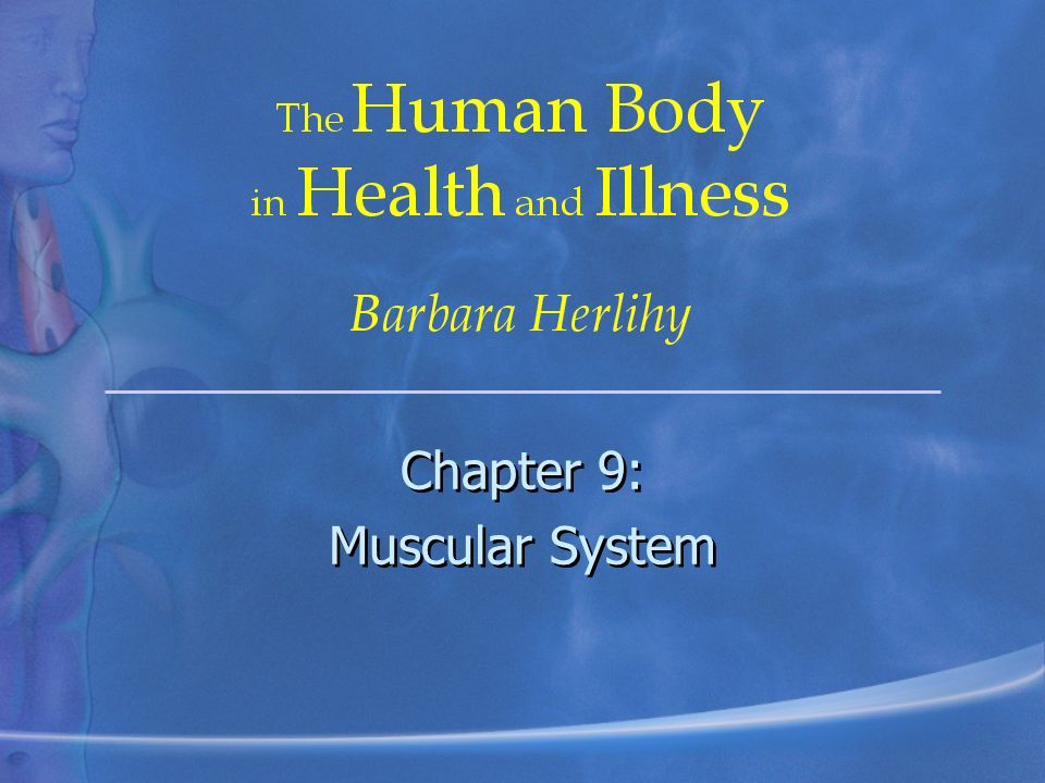 Chapter 9: Muscular System - ppt video online download