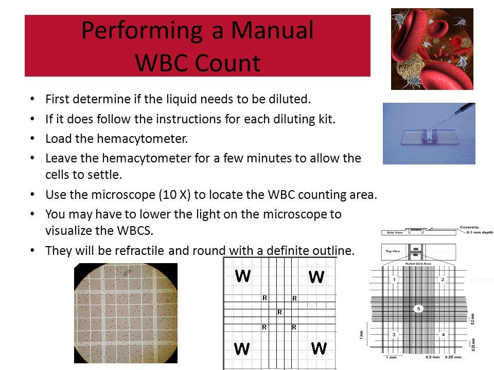 RBC, WBC, & PLT Counts. - ppt video online download