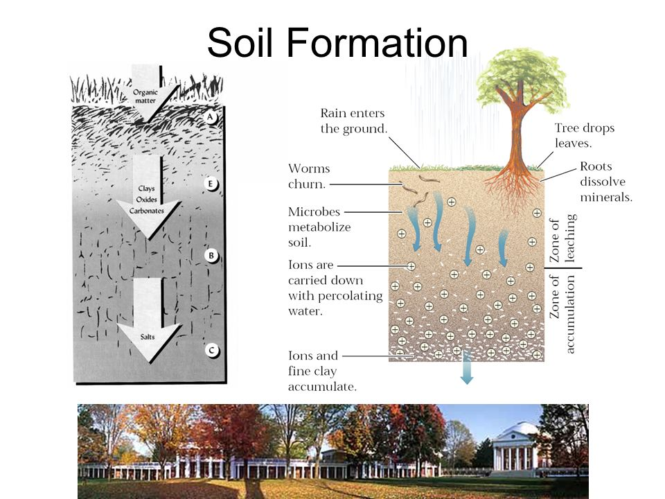 Soils and regolith ppt video online download for Soil formation