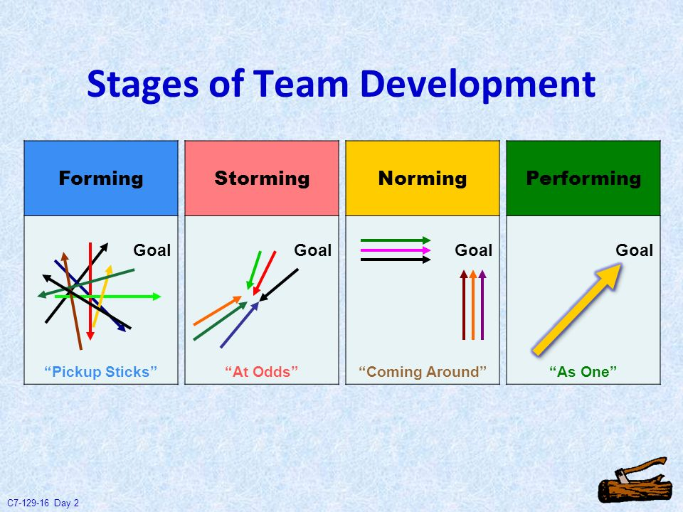 stages of team development These stages are commonly known as: forming, storming, norming, performing, and adjourning tuckman's model explains that as the team develops.