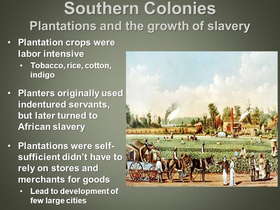 plantation crops and the slavery system In exchange for native labor and tribute, the spanish lord would provide protection and education in reality, however, the encomienda system was thinly-masked slavery and led to some of the worst horrors of the colonial era.