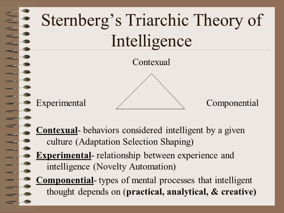 theories of intelligence essay