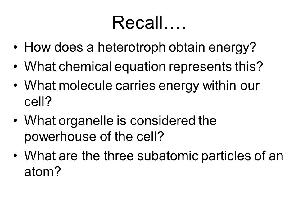 Chapter 5 Bio 391 Cell respiration. - ppt video online download