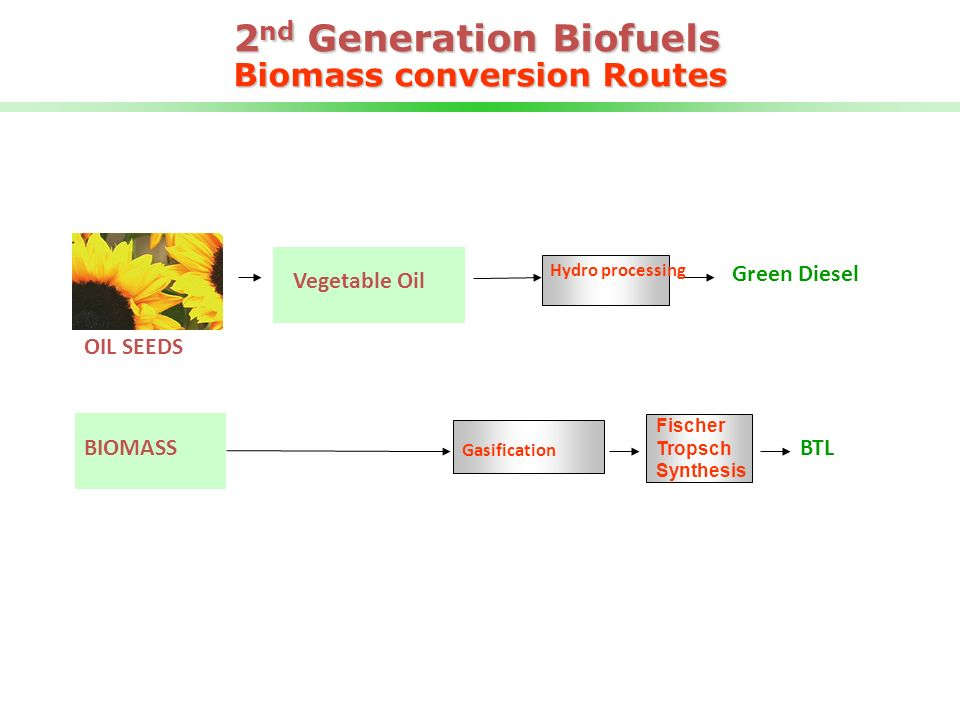 2nd Generation Biofuels Biomass conversion Routes