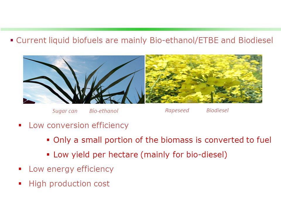 Current liquid biofuels are mainly Bio-ethanol/ETBE and Biodiesel