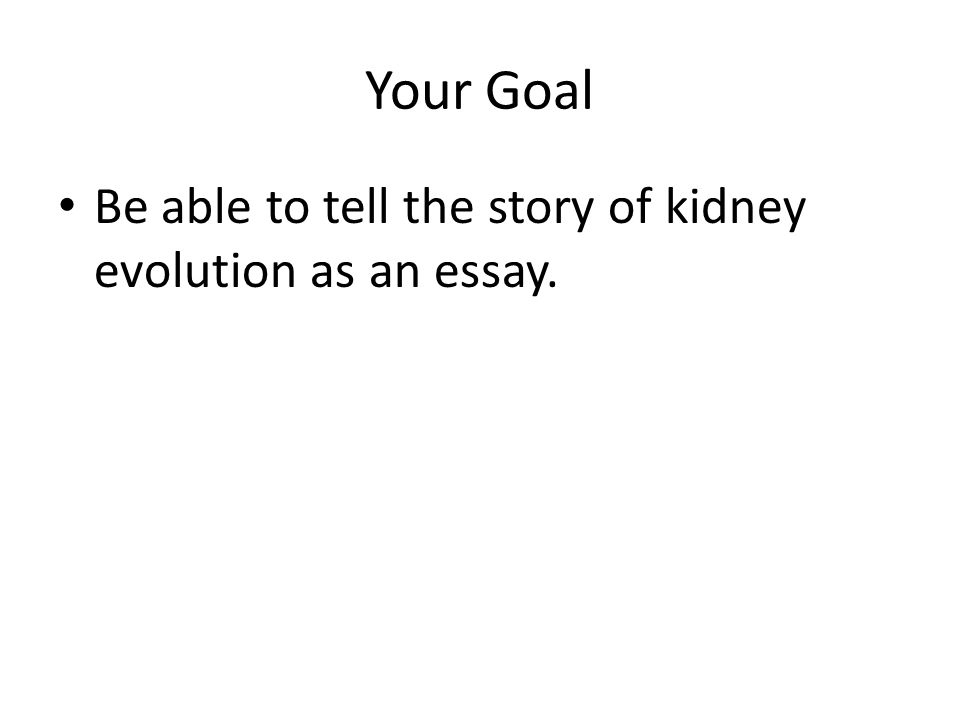 waste and water regulation evolution ppt  3 your goal be able to tell the story of kidney evolution as an essay