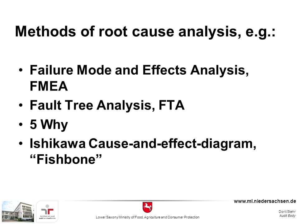 internal auditing and root cause analysis