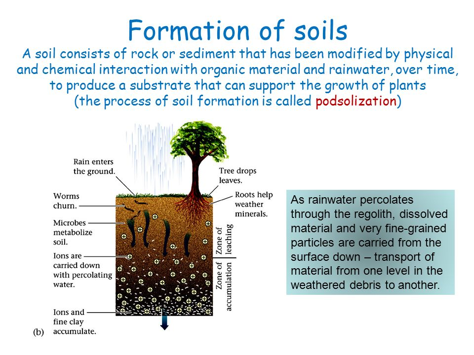 Chemical weathering the breakdown of rocks by chemical for Soil formation