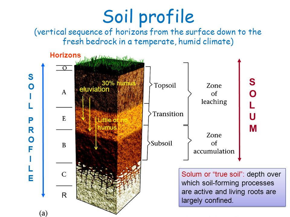 Chemical weathering the breakdown of rocks by chemical for Soil forming minerals