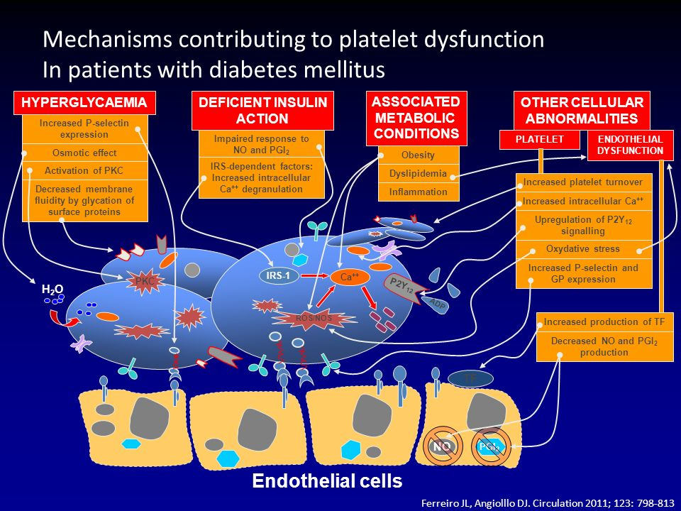 Mechanisms contributing to platelet dysfunction In patients with diabetes mellitus