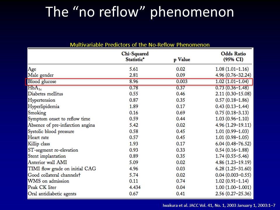 The no reflow phenomenon