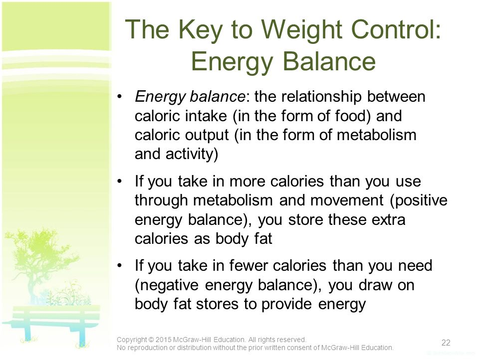 relationship between weight and energy balance