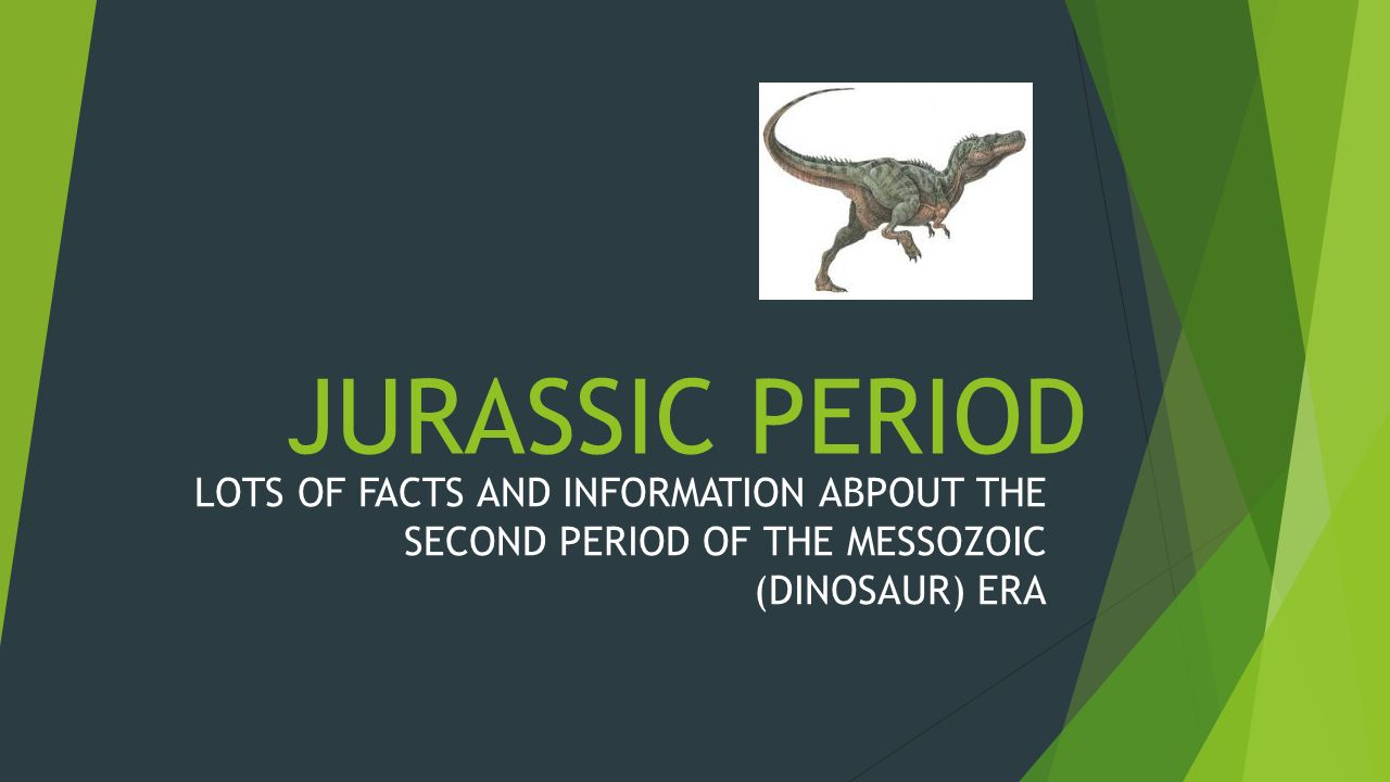 an overview of the jurassic period in the mesozoic era