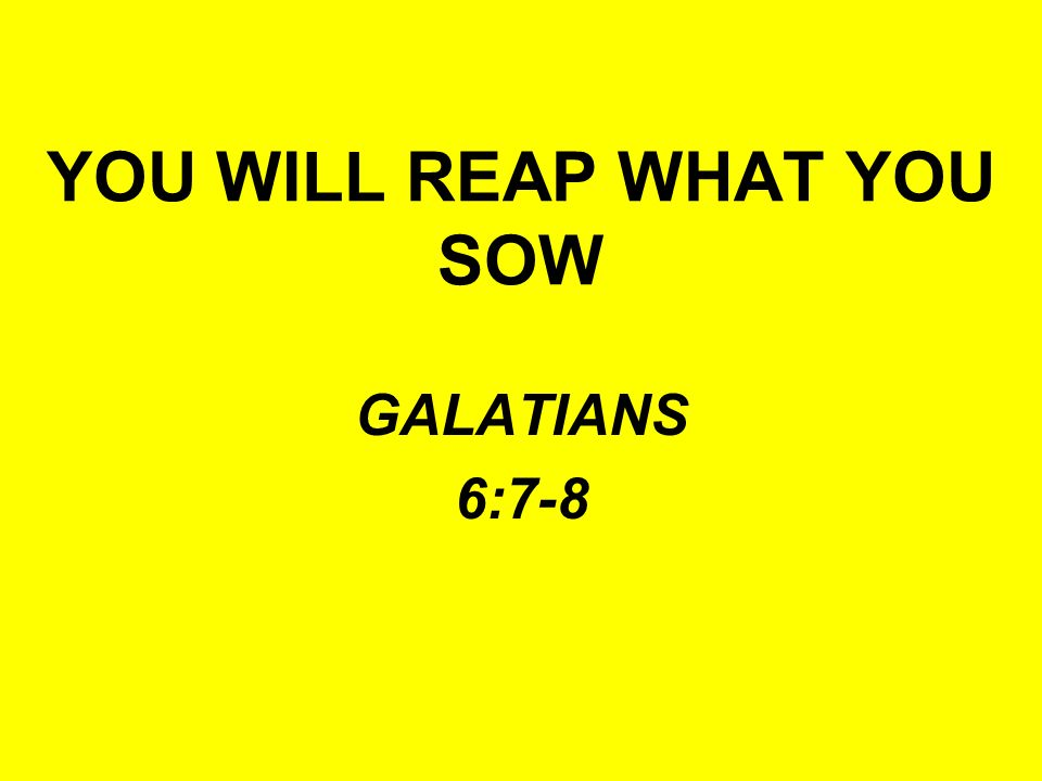 WHAT YOU SOW IS WHAT YOU REAP