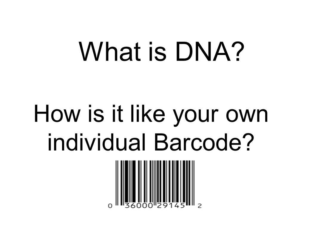 Dna the blueprint of life ppt video online download 4 how malvernweather Choice Image
