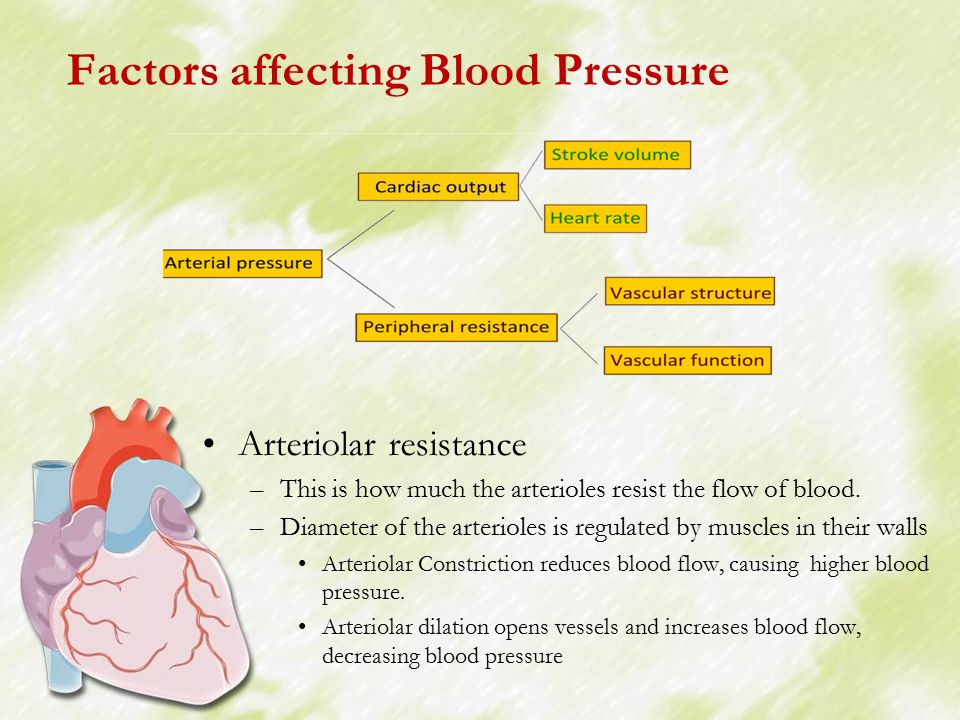factors affecting blood pressure essay Factors affecting blood pressure  water, then blood pressure rises the blood volume is regulated by the renal system in a dehydrated person,.