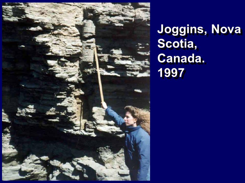 Joggins, Nova Scotia, Canada.