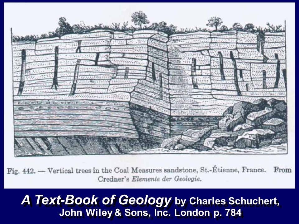 A Text-Book of Geology by Charles Schuchert,
