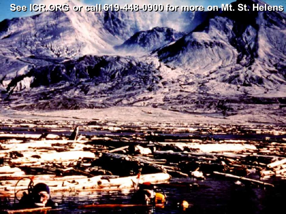 See ICR.ORG or call 619-448-0900 for more on Mt. St. Helens