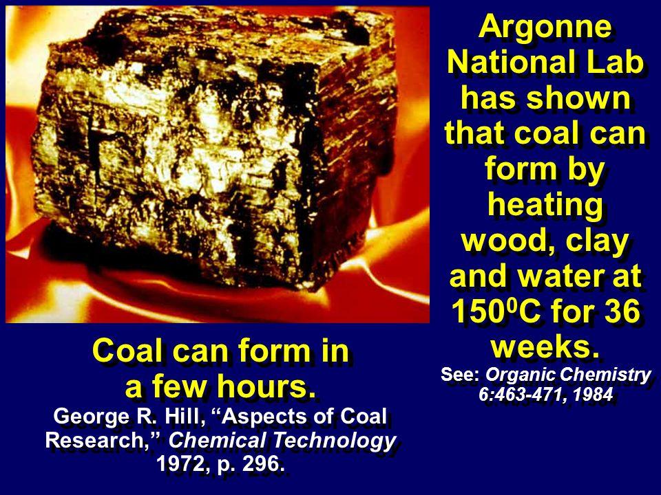 See: Organic Chemistry 6:463-471, 1984