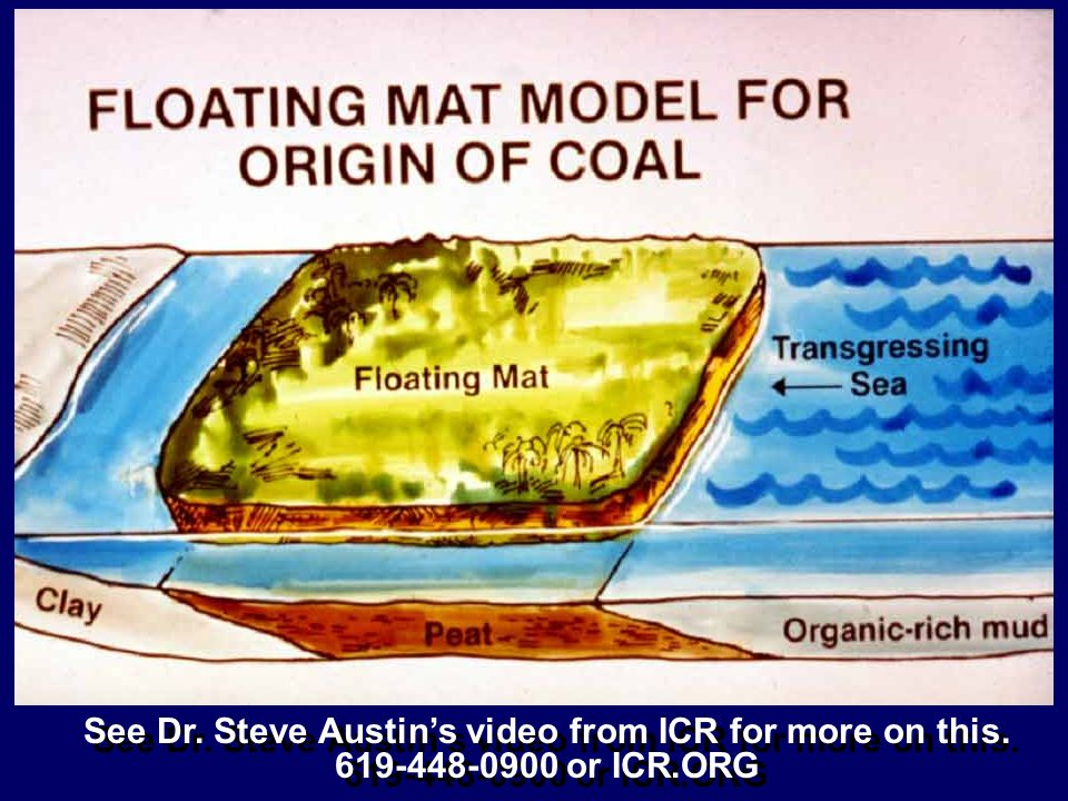 See Dr. Steve Austin's video from ICR for more on this.