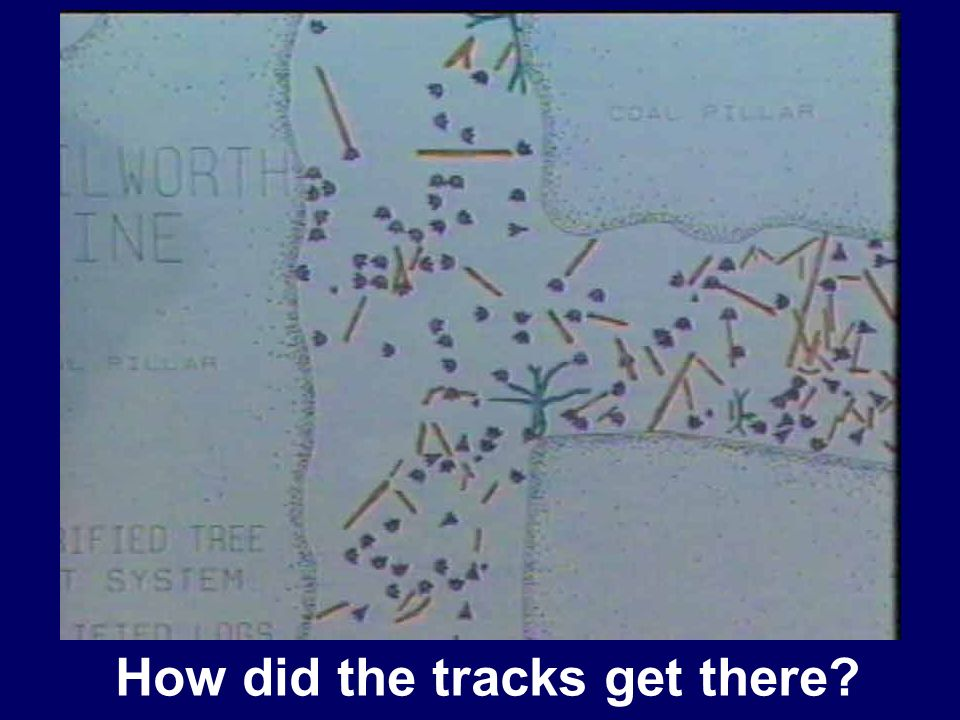 How did the tracks get there
