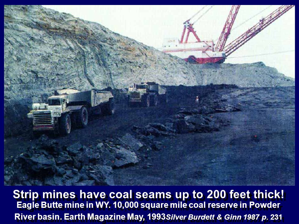 Strip mines have coal seams up to 200 feet thick