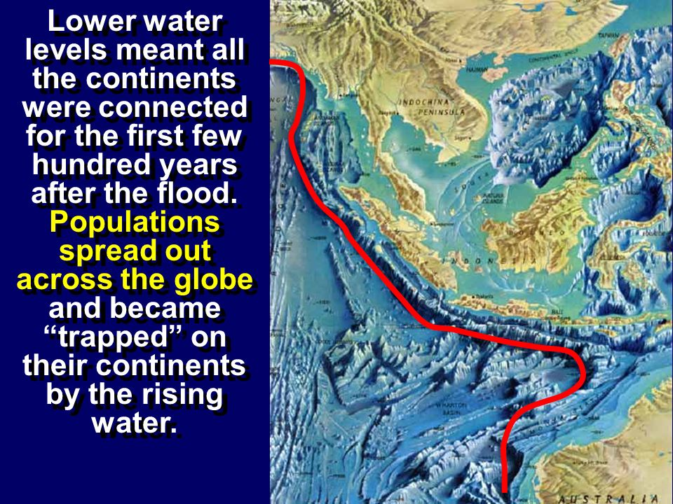 Lower water levels meant all the continents were connected for the first few hundred years after the flood.