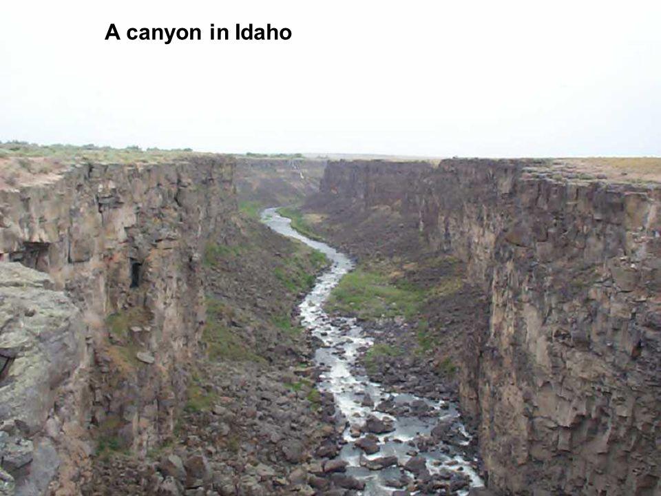A canyon in Idaho