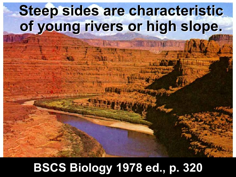 Steep sides are characteristic of young rivers or high slope.