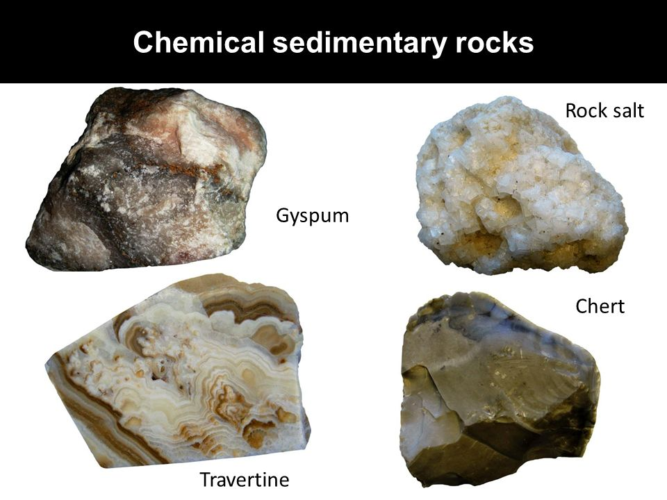 sedimentary rock Start studying sedimentary rocks learn vocabulary, terms, and more with flashcards, games, and other study tools.
