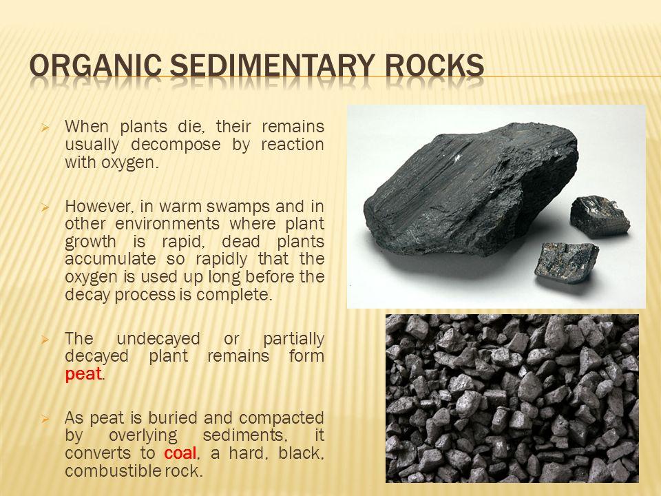 UNIT 5 Sedimentary Rocks. - ppt video online download