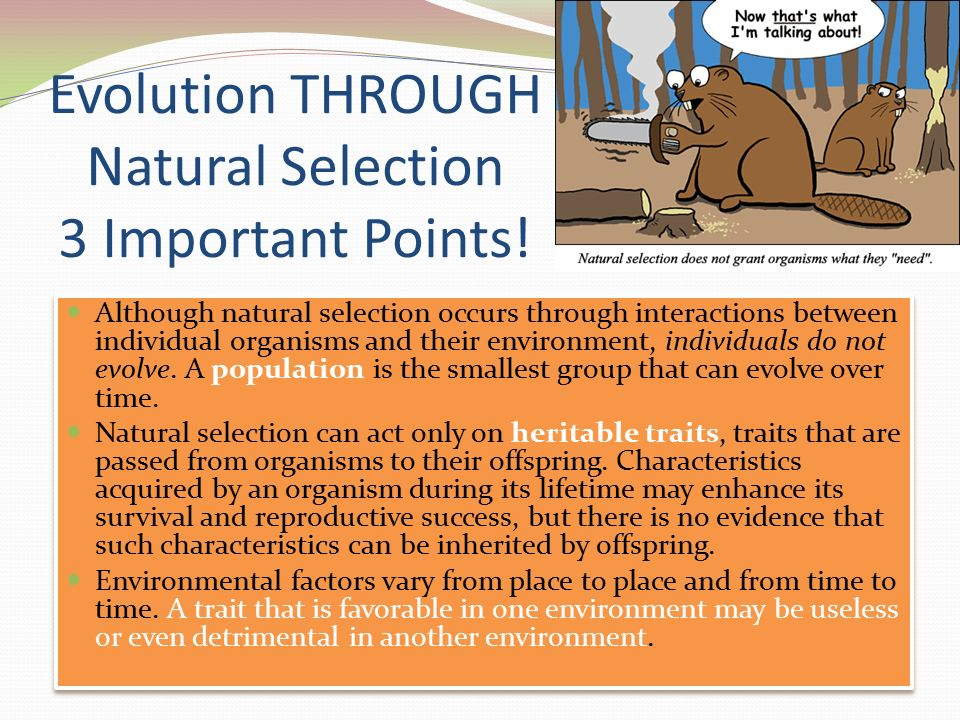 Why Can Natural Selection Only Act On Heritable Traits