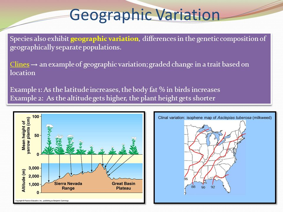 human variations in high altitude populations Natural selection on genes related to cardiovascular health in high-altitude  with phenotypic variations related  american journal of human.