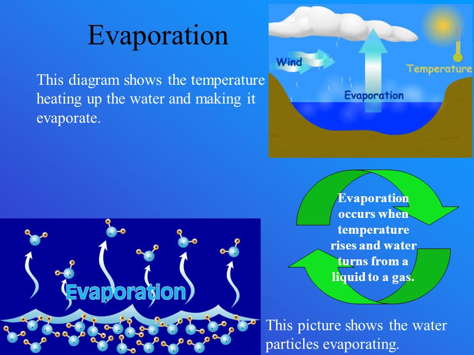water cycle evaporation drives it The water cycle is not a simple circle but a complicated let's begin with large bodies of water the sun, which drives the water cycle, heats water some of it evaporates as vapor into the air evaporation rates increase as the temperature increases.