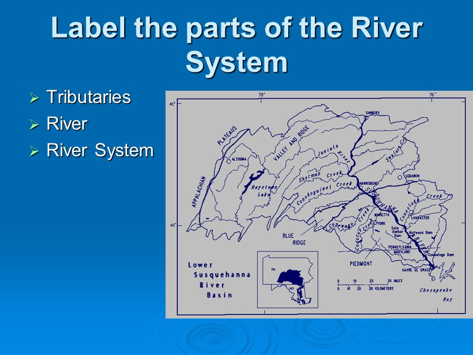 how to tell a rivers order