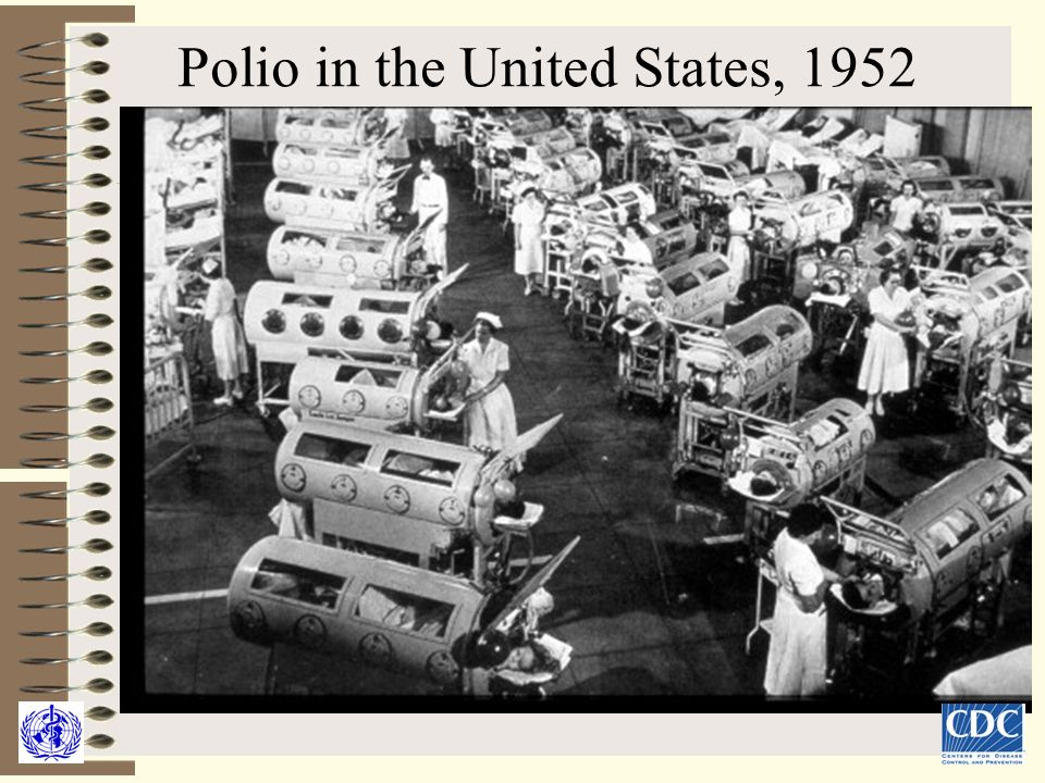 Chair of medical biology microbiology virology and immunology ppt download for Polio transmission swimming pools