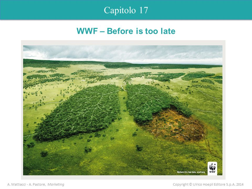 Capitolo 5 Analisi dell'offerta Capitolo 17 WWF – Before is too late