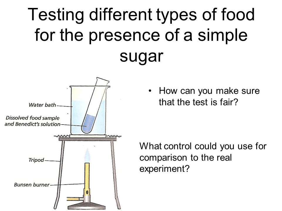 Experiment to Test the Presence of Starch in the Given Food Sample