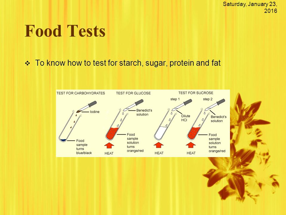 food lab testing for protein starch I need more protein than the average person, desjardine says  this meant  she cut back on breads and other starchy foods, too  to starch and sugar came  from the fasting blood test that measures glucose response.
