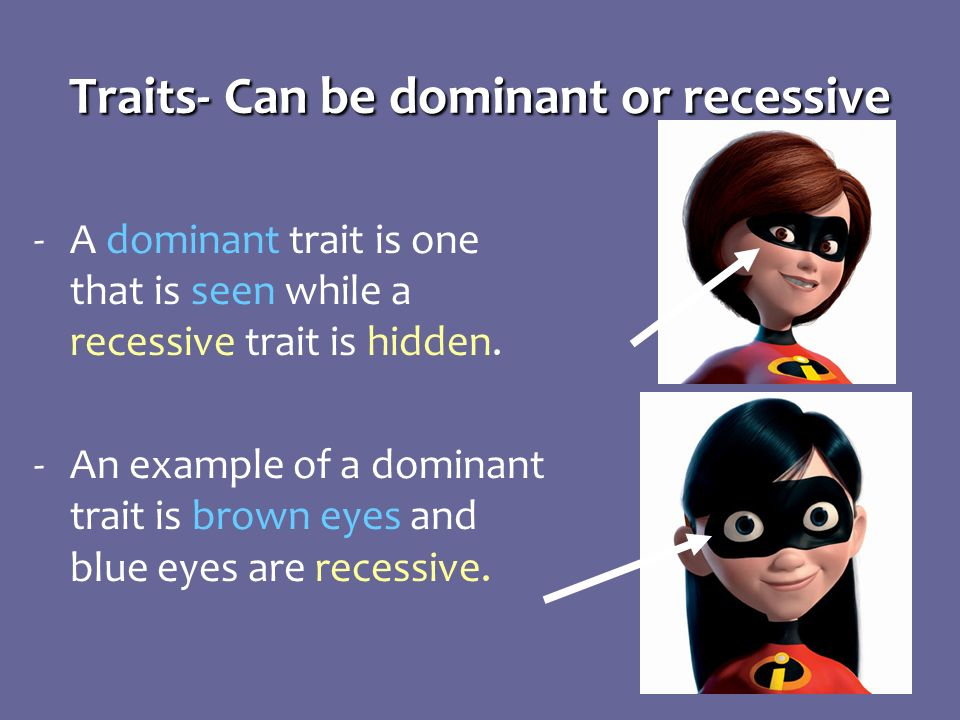 10 Traits- Can be dominant or recessive