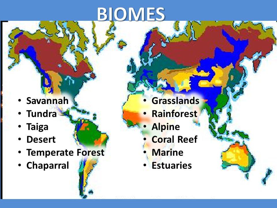 Biomes savannah grasslands tundra rainforest taiga alpine desert biomes savannah grasslands tundra rainforest taiga alpine desert gumiabroncs Images