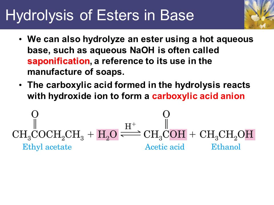 hydrolysis of esters Kinetically, acid hydrolysis is a first-order reaction  why is ice water used in acid hydrolysis of esters how do i thoroughly learn nitric acid.